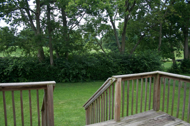 Deck overlooking golf course - 4 Bedroom house 1 mile from UK's campus! Rental