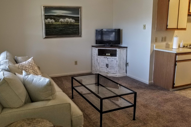 1BR - Living Room