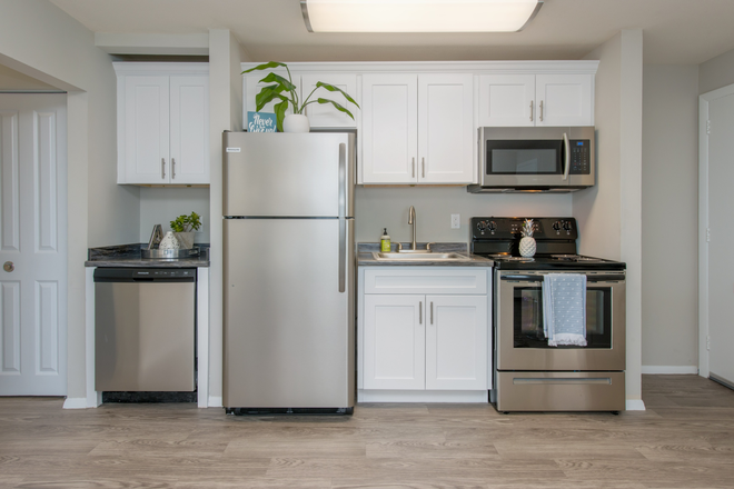 Stainless Steel Appliances - Aspen Chase -  All-Inclusive Apartments Minutes From Campus! Join Our Waitlist for Summer/Fall 2021!