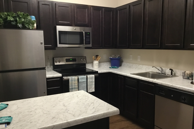 Kitchen - Seahawk Cove - Now Leasing for Fall 2020 Apartments