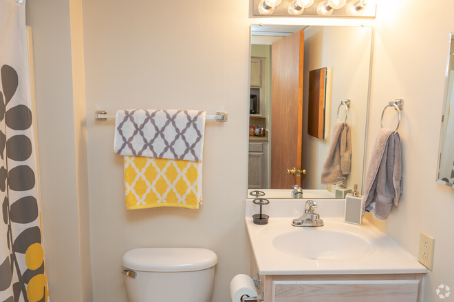 Studio, 1BA - 336 SF- Bathroom