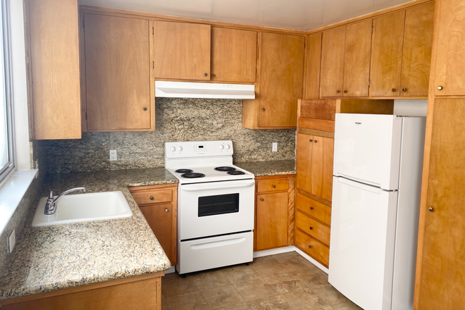 Kitchen - Large 2 bedroom  10 min away from USF Apartments