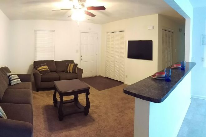 Living Room Side View - ODUrent Offers 3-Bed Colley Bay Apts!