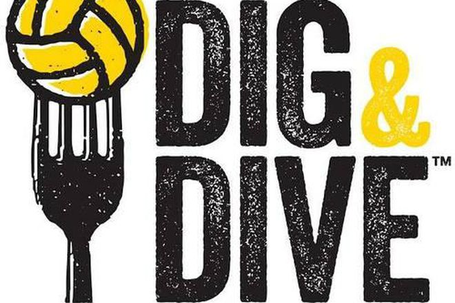 Dig and Dive - Avalon Apartments