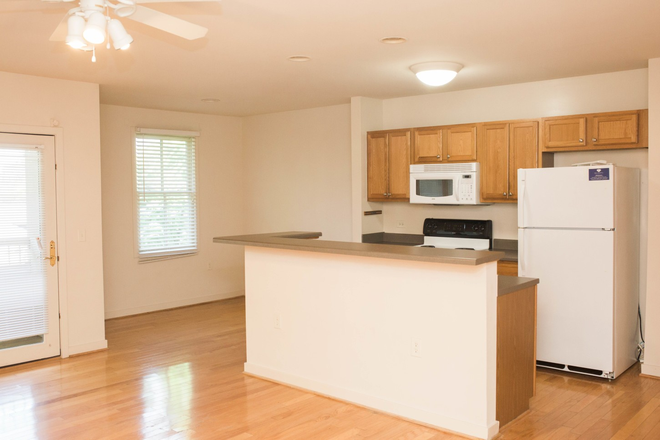 Kitchen - NOW SIGNING 2021-2022 - Venable Court Apartments