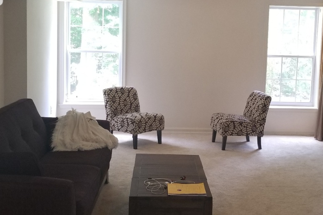 Spacious and quiet living area - Beautiful furnished room for rent, in quiet neighborhood  fairfax. Rental