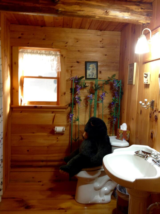 Our bears use the inside plumbing! - Private log cabin on 11 acres 1 mile to VLS Rental