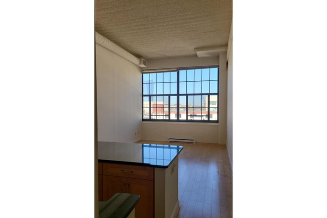 Living space with 15' ceilings - Locust Point Loft