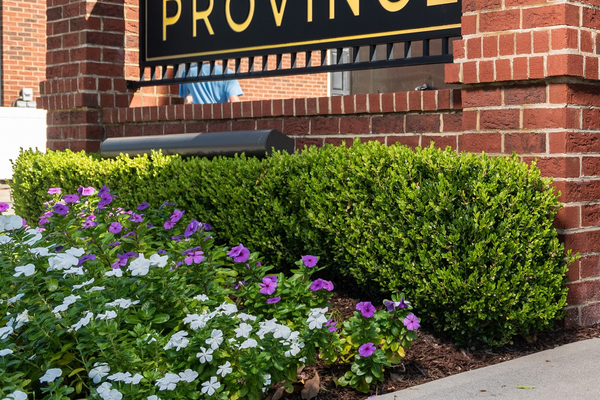 The Province Welcome Sign