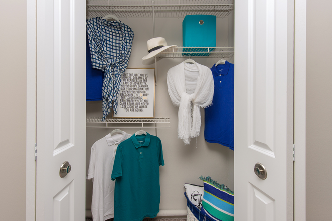 Closets with Built-In Organizers