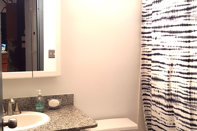 Bathroom - Bright Penthouse Level Loft Union Square-Furnished
