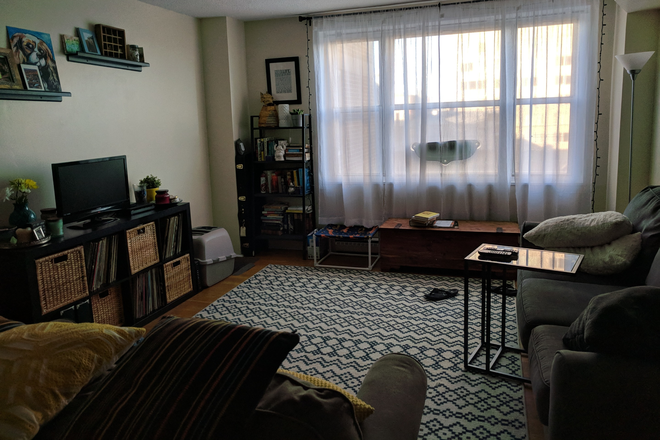 Living Room 2 - AVAILABLE STARTING July 1st!  QUIET, PRIVATE APT BY JHU shuttle stop!