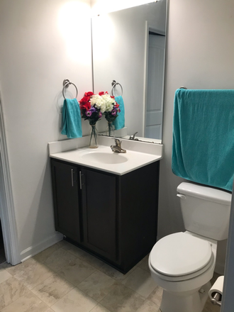 Bathroom - Camden Forest Apartments One Bedroom, One Bath Sublease