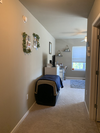 Room entrance (bathroom to right) - Sublet for spacious bedroom at The Wyatt (close to campus!) Apartments