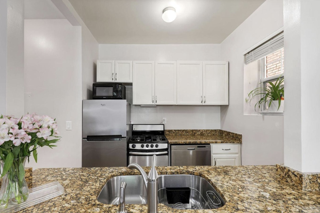 Kitchen - Beautiful, Safe, Clean, Fully Furnished 1 Bedroom in Georgetown Condo