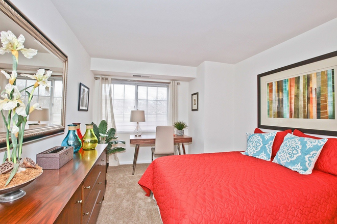 Second Bedroom in Fairfax Apartment at Fairfax Square