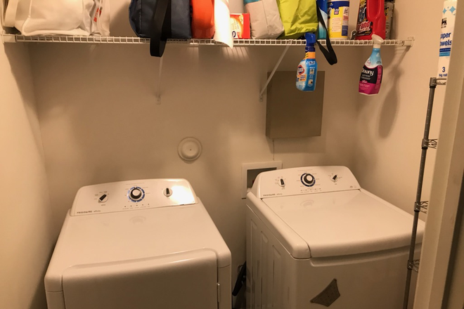 Laundry - Camden Forest Apartments One Bedroom, One Bath Sublease