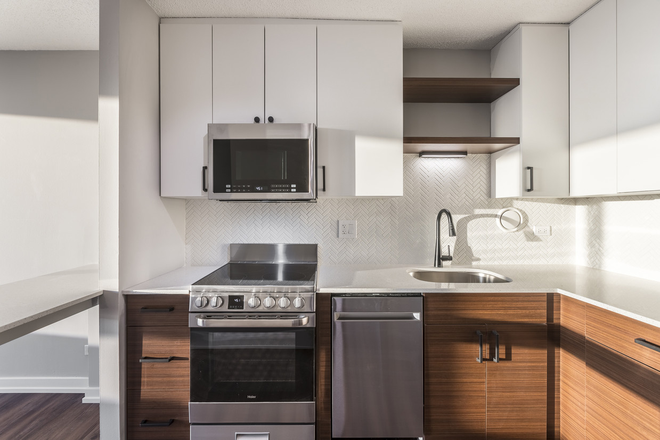 Park Michigan Renovated Kitchen - Convertible Unit 2019 - Limited Availability