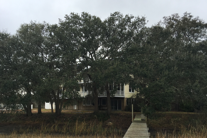 view of house from dock - MARSH FRONT PROPERTY WITH DOCK AND BEAUTIFUL OAK TREES - ONLY MINUTES FROM MUSC Rental