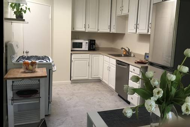 Kitchen - USF Campus - 2 Bedroom/1 Bath - Top Floor Apartments