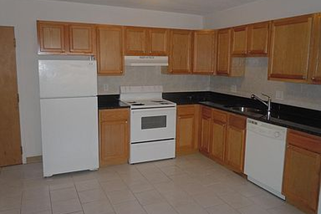 Kitchen - Great 1 bed 1 bath in Waltham Recently Renovated Kitchen & Bathroom Apartments