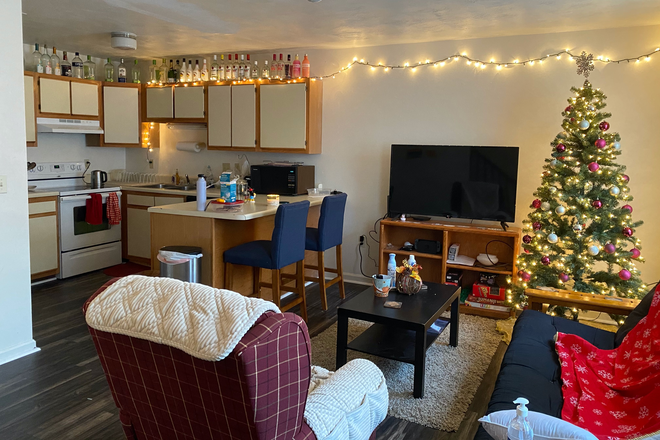 Living Room - Rutherford Townhomes with Full Amenities. Looking for 2 Female Roommates!