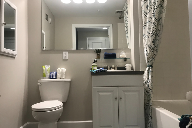 Modern Bathroom with Vanity - Alpine Commons -  All Inclusive Studio, 2,3 & 4 Bedrooms! Join Our Waitlist for Summer/Fall 2021! Apartments