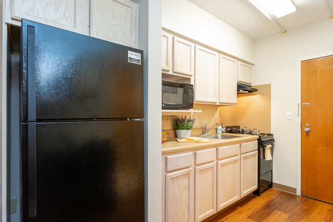 Studio, 1BA - 336 SF- Kitchen