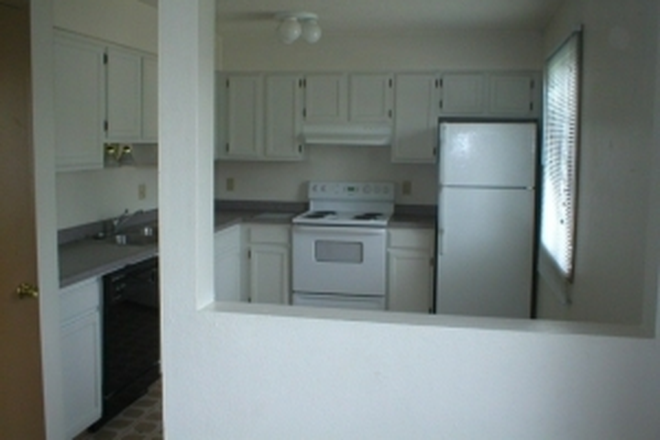 Kitchen - 21/22 Laundry and Free WiFi! Apartments