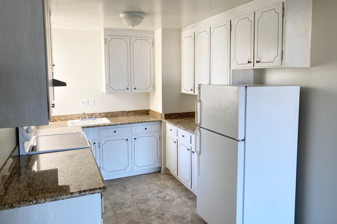kitchen - Apartment for rent 1 block from USF Koret center